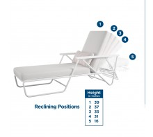 Connie Outdoor Multi-Position Chaise Lounge with Cover