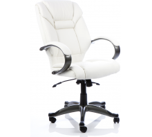 Galloway High Back Leather Executive Chair with Arms
